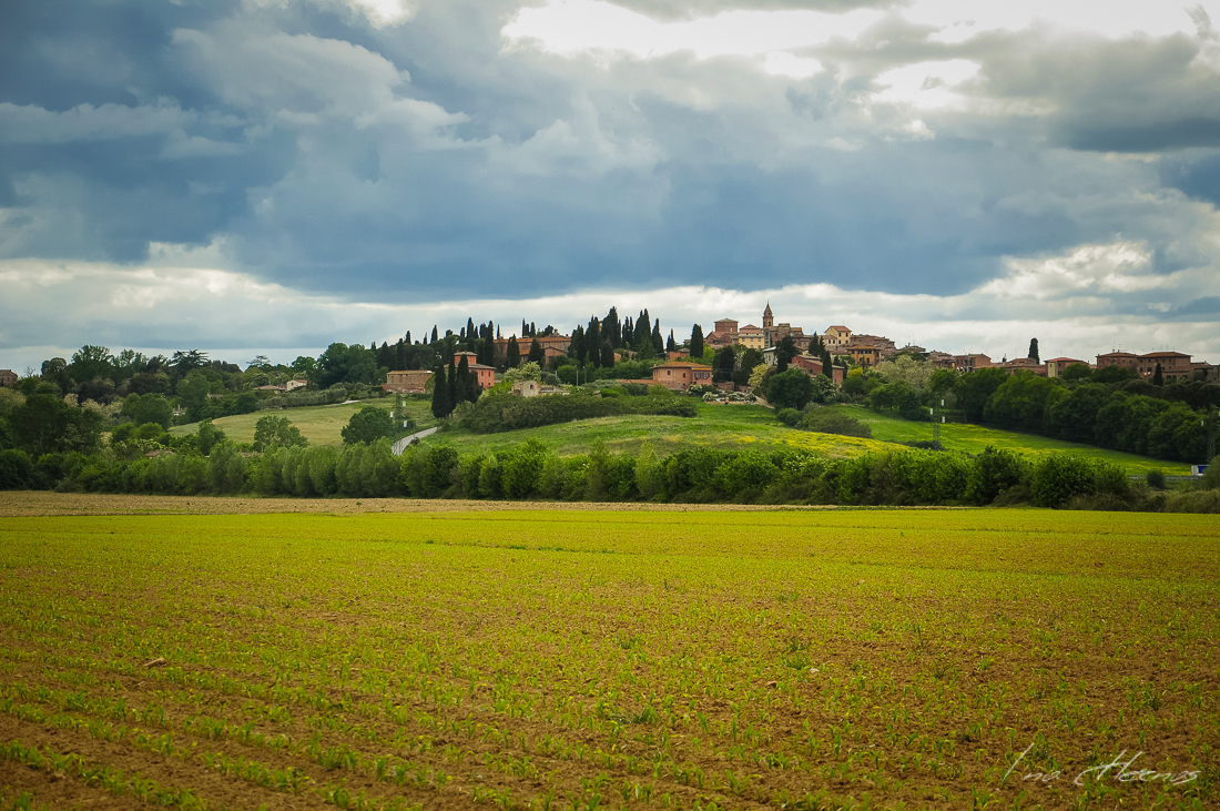 toscana bettolle 9